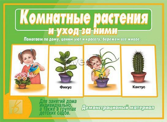 Уход за комнатными растениями и их